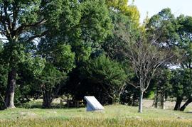 写真:堤土塁跡歴史公園1